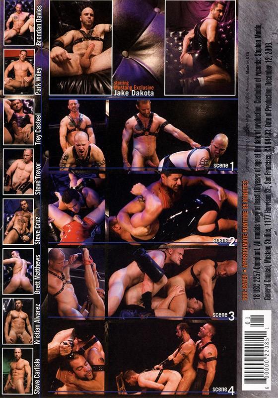 Limits DVD - Back