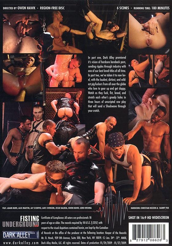 Shockwave 2: Director's Cut DVD - Back