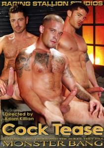 Cock Tease DVD (S)