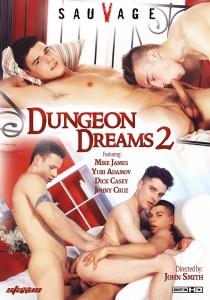 Dungeon Dreams 2 DVDR (NC)