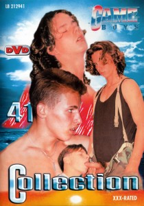 Game Boys Collection 41 DVDR (NC)