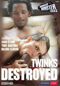 Twinks Destroyed DVD (NC)