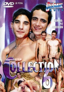 Game Boys Collection 6 - Cockparade + Dingsda DVDR (NC)