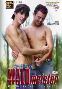 Die Waldmeister DVDR (NC)