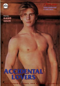 Accidental Lovers DVD - Front