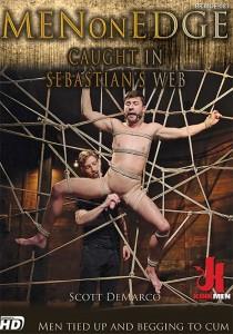 Men on Edge 81 DVD (S)