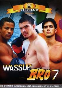 Wassup Bro 7 DVD (S)