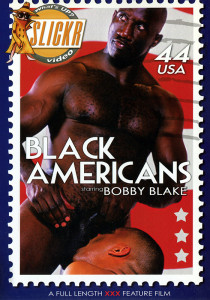 Black Americans DVDR (NC)
