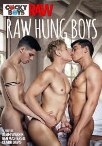 Raw Hung Boys DVD