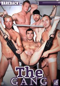 The Gang DVD